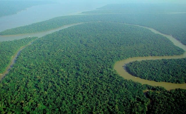 Amazon River - longest rivers in the world